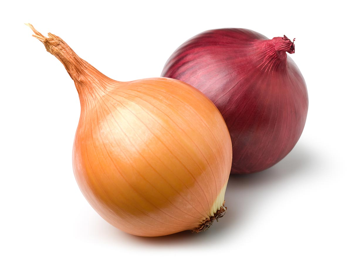 the onions Nutrition facts and information for onions, raw estimated glycemic load™ glycemic load is a way of expressing a food or meal's effect on blood-sugar levels nutrition data's patent-pending estimated glycemic load™ (egl) is available for every food in the database as well as for custom foods, meals, and recipes in your pantry.